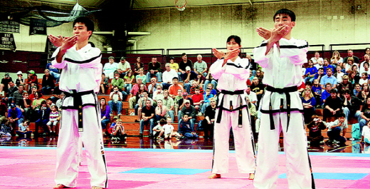 N Korean taekwondo : Arts & Entertainment : News : The Hankyoreh