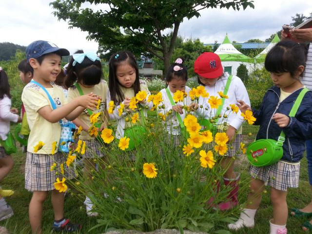 벌들이 꿀을 빠는 꽃을 관찰하고 있는 어린이들.