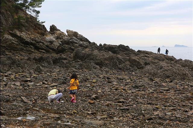 꾸지나무골해수욕장 남쪽의 자갈밭해변. 사진 이병학 선임기자