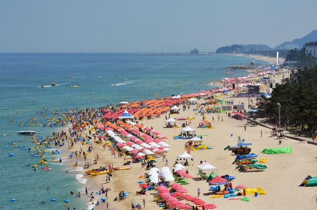 지난해 강릉 경포해변에서 피서객들이 여름 바다를 즐기고 있는 모습. 사진 강릉시청 제공
