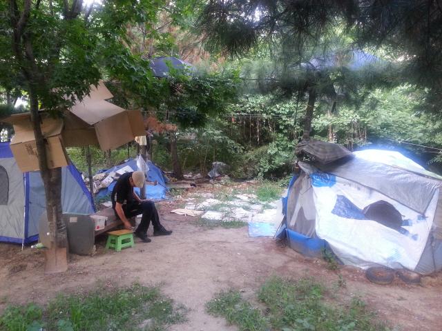 꽁지머리 아저씨의 텐트집(오른쪽)과 기자의 텐트집 사이에 놓인 나무벤치에 아저씨가 지난 8일 앉아 있다. 꽁지머리 아저씨의 텐트 위에 비닐 돗자리와 등이 덮여 있어 비를 막아준다.  박유리 기자