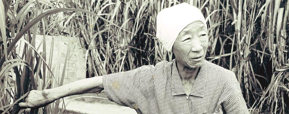 할머니의 말년을 가족같이 돌봤던 재일본조선인총연합회(총련) 오키나와 지부의 일꾼이었던 김수섭(74), 김현옥(73)씨 부부와 함께 나들이를 갔다가 찍은 사진. 사진 김수섭씨 부부 제공
