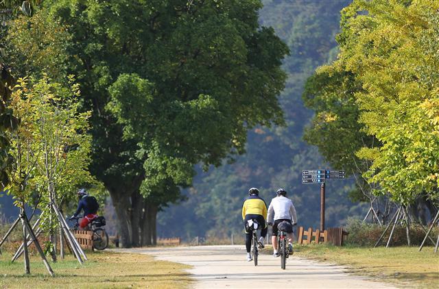 여주 강천섬의 자전거족. 사진 이병학 선임기자
