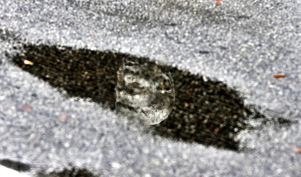 8일 오전 서울 종로 전태일다리(버들다리)에서 전태일 열사 45주기를 추모대회가 열렸다. 비가 내려 생긴 웅덩이에 전태일 동상이 비쳐보이고 있다. 김명진 기자 littleprince@hani.co.kr