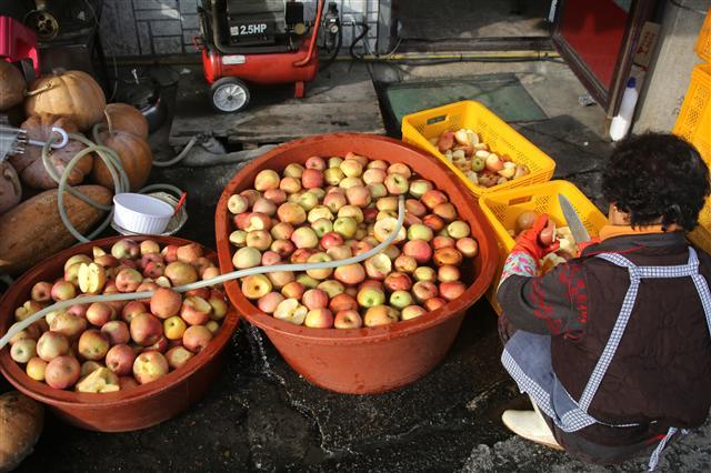 순흥면 정류소삼거리 부근 한 가게 앞에서 사과를 씻고 있는 주민. 사진 이병학 선임기자