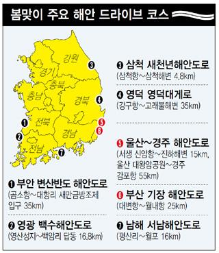 봄맞이 주요 해안 드라이브 코스