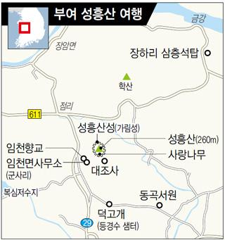 부여 성흥산 여행