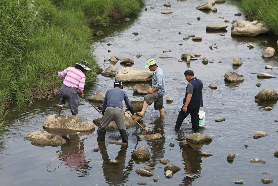 물고기잡이에 나선 내동마을 주민들.