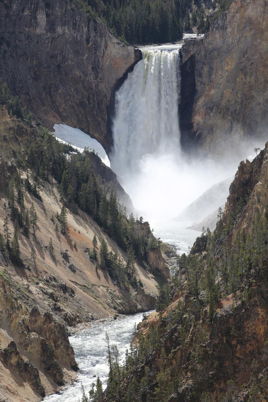 옐로스톤 강 협곡의 로워 폭포.