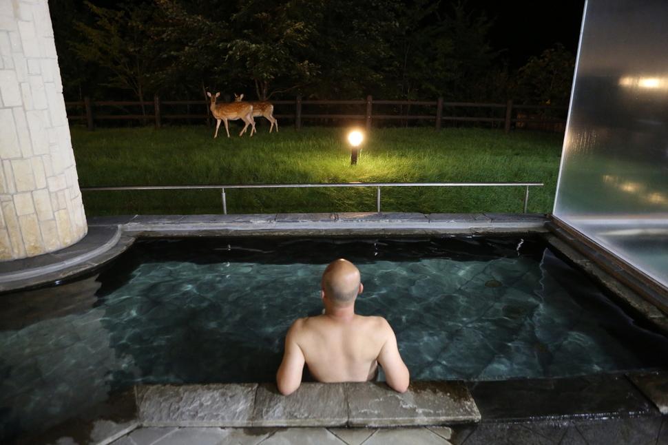 다이세쓰국립공원 소운쿄 다이세쓰호텔의 노천탕. 사슴 노니는 모습을 보며 노천욕을 즐길 수 있다.