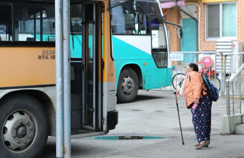 춘양버스터미널. 차표를 손에 든 할머니가 버스 가는 곳을 확인하고 있다.