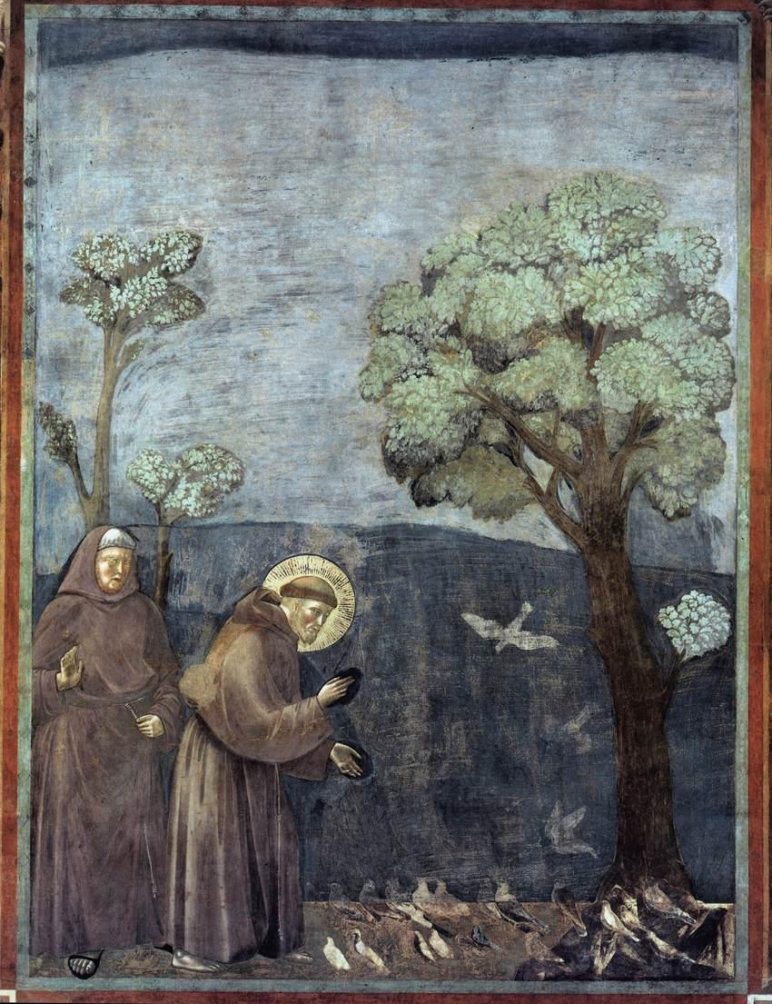 새들에게 설교하는 프란치스코, 지오토, 아시시, 성 프란치스코 대성당.