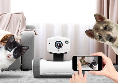 IT 기술로 CCTV의 사각지대를 없애고 양방향 통화까지 가능하도록 진화한 바램시스템의 로봇형 CCTV 앱봇 라일리. 바램시스템 제공