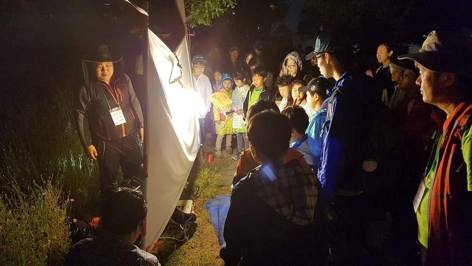 지난해 6월 태화강대공원 일대에서 열린 '2016 울산 바이오블리츠' 야간 곤충탐사활동 모습.