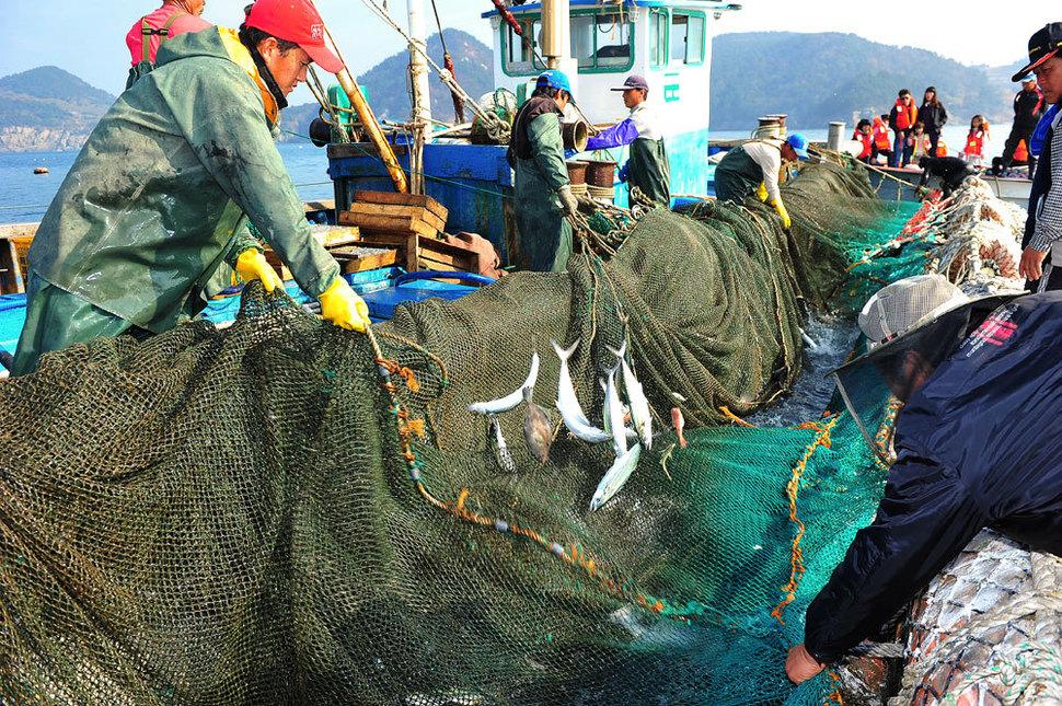 안도 인근 바다에서 주민들이 정치망으로 고기를 잡고 있다. 이재언 제공