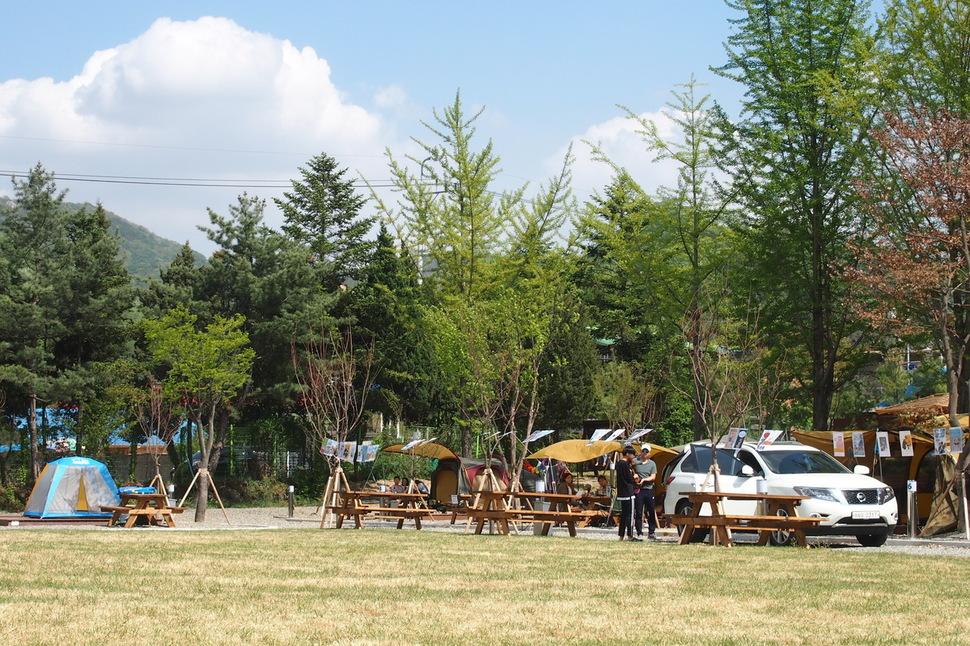 경기도 파주시에 폐교를 활용해 숲 속에서 독서와 캠핑을 할 수 있는 '별난독서캠핑장'이 21일 문을 연다. 파주시 제공