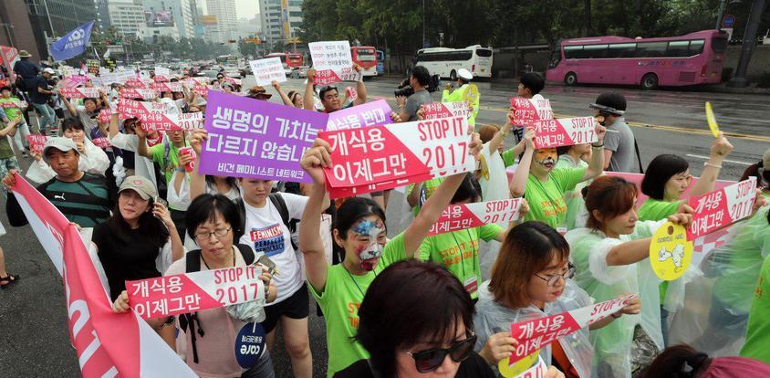 Corea del sur el debate sobre el consumo de carne de perro quema de nuevo ... - La Hankyoreh 5