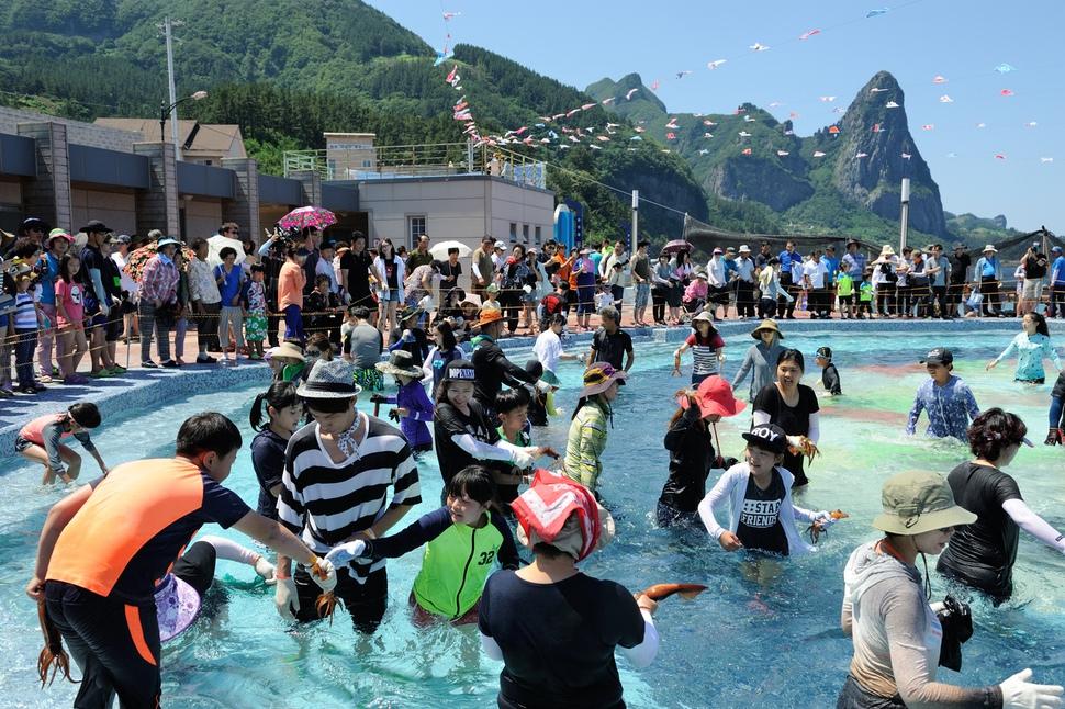 '울릉오징어 축제'에 참가한 관광객들이 맨손으로 오징어를 잡아올리며 즐거워하고 있다. 경산북도 제공
