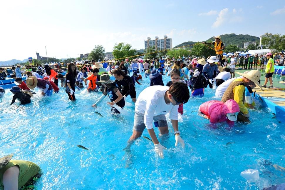 봉화 은어축제에 참여한 수많은 피서 인파들이 맨손으로 은어를 잡고 있다.  경상북도 제공
