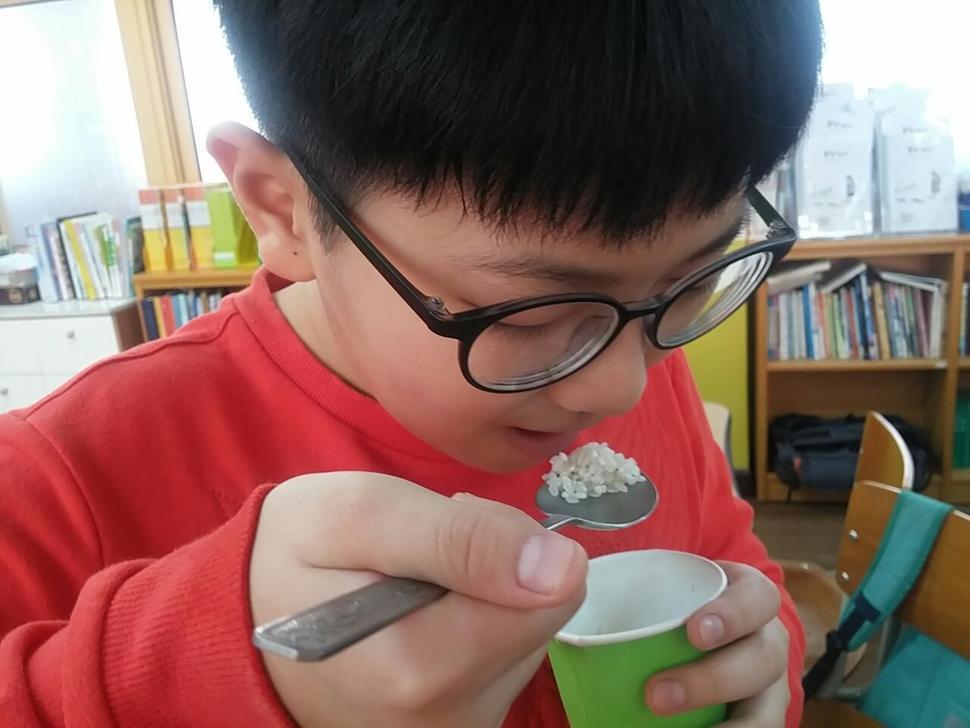통영 용남초 학생이 <몽실 언니> 슬로 리딩 수업 시간에 작품에 나온 암죽을 만들기 전 생쌀을 씹어보고 있다. 용남초 제공