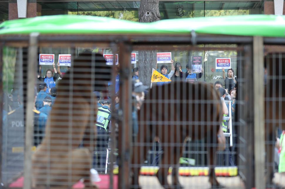 Perro de los agricultores de la demanda que su industria sea legalizada - El Hankyoreh 2