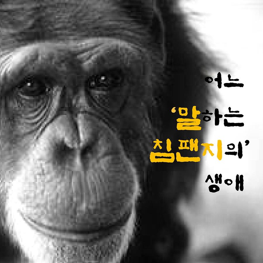 [카드뉴스] 어느 '말하는 침팬지'의 생애 : 인간과동물 : 인간과동물 : 애니멀피플 : 뉴스