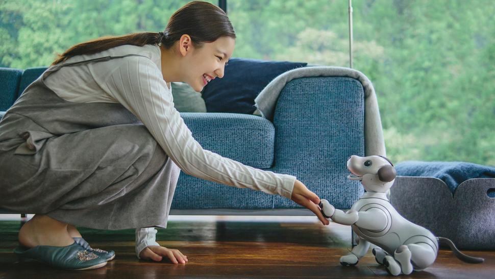 지난 1일 소니는 2006년 이후 판매를 중단했던 강아지 모양의 엔터테인먼트 로봇 '아이보'를 업그레이드해 2018년 1월부터 판매에 나선다고 발표했다.  소니 제공