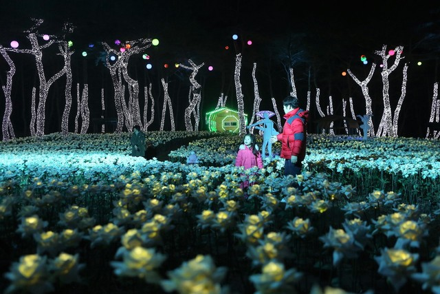 단양 수양개유물전시관 야외의 '비밀정원' 야경.