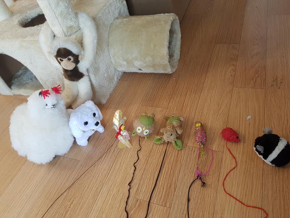 니체의 사냥 장난감들.