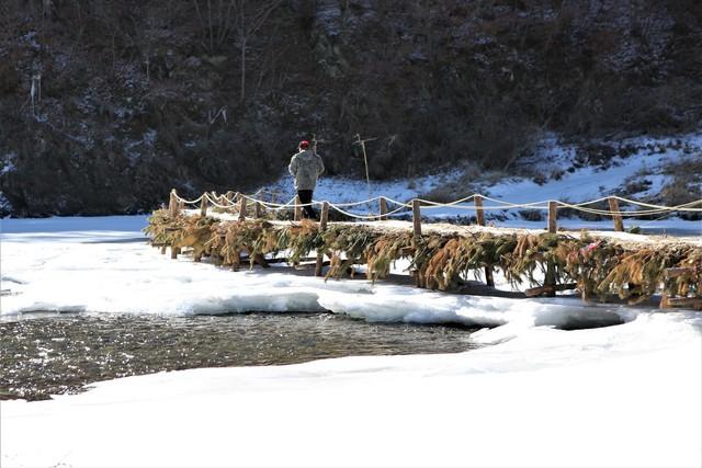 북노일리 주민들은 해마다 가을 힘을 모아 섶다리를 새로 놓는다.