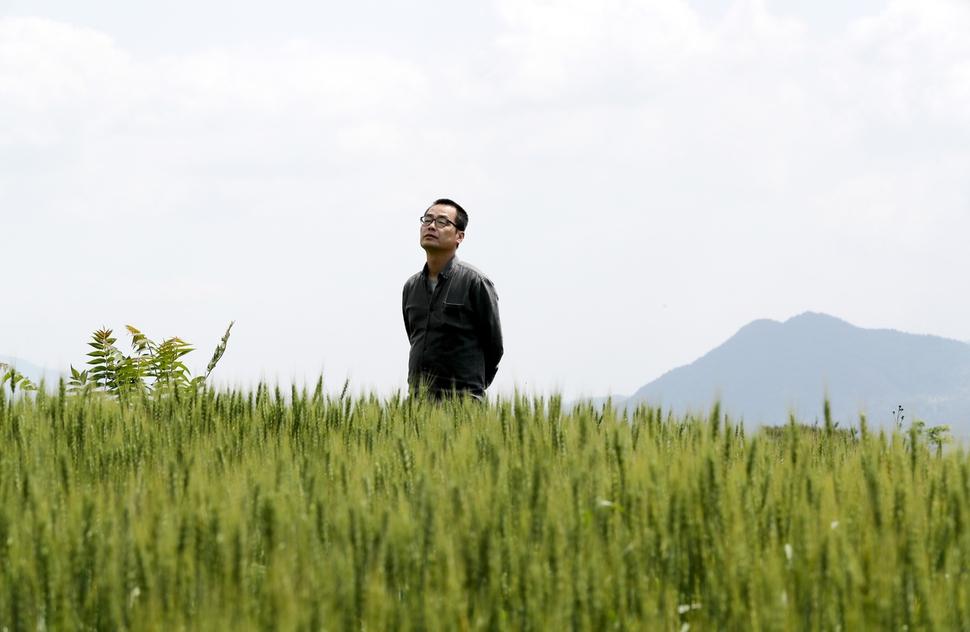 권산씨가 지난 9일 전남 구례군 광의면 난동리 자신의 작업실 앞 마을 밀밭에서 산책을 하고 있다. 구례/강재훈 선임기자 khan@hani.co.kr