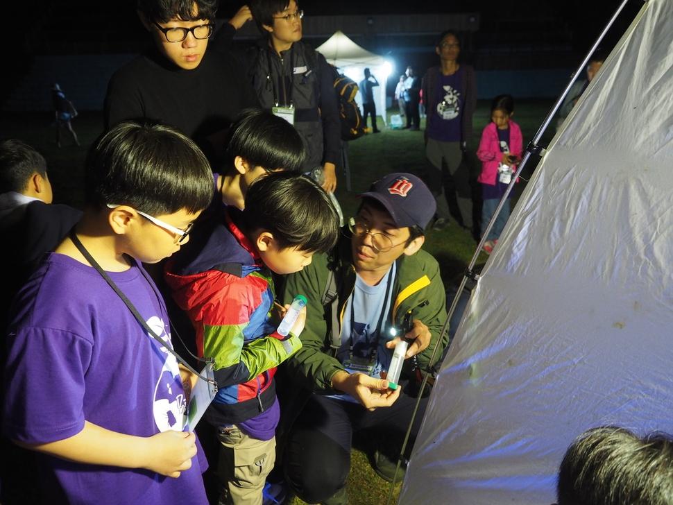 등불을 밝혀 곤충을 유인하는 야간채집 행사에서 참가자들이 채집한 곤충을 살펴보고 있다. 이날 자나방류가 많이 날아들었다.