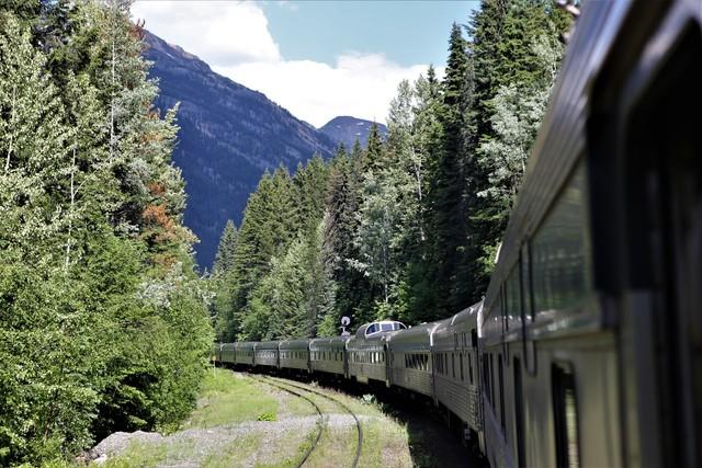 횡단열차가 가문비나무, 자작나무 우거진 로키산맥 산자락을 달리고 있다. 이병학 선임기자
