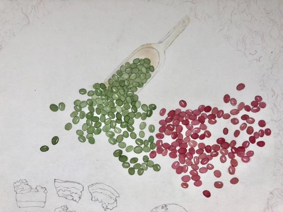 아이들이 식재료를 토대로 그림을 그려 만든 엽서.