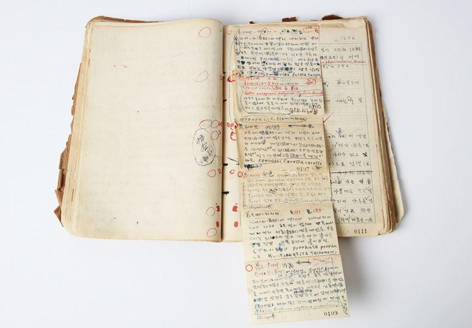 1941∼1942년에 작성한 원고 수정본(제3권). 사진 출처 <국가기록원>