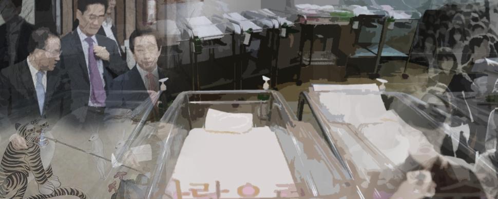 그래픽-장은영