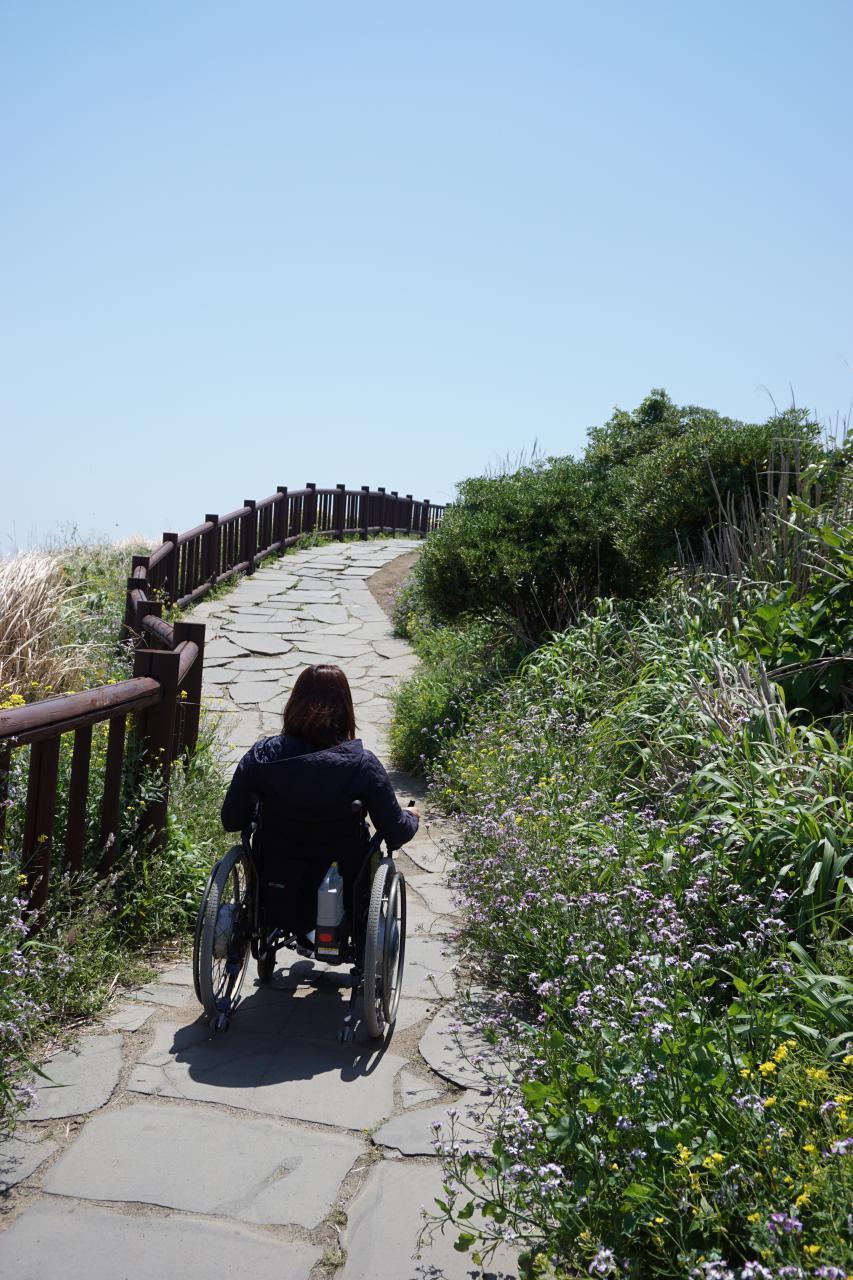 두리함께를 통해 무장애여행에 나선 여행객이 휠체어를 타고 제주도를 돌아보고 있다. 두리함께 제공