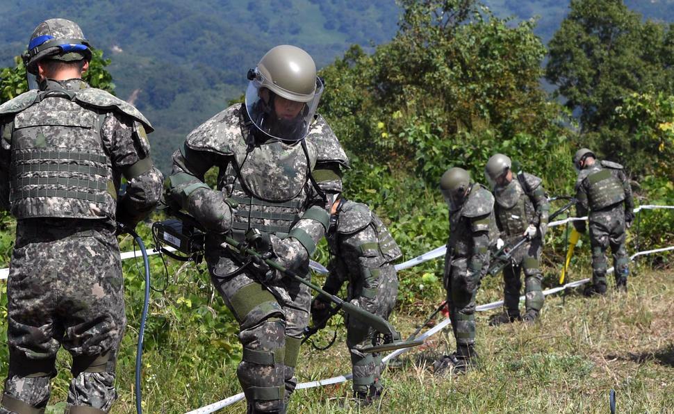 육군은 비무장지대 내 한국전쟁 전사자 유해발굴을 위한 지뢰제거작업을 2일 강원도 철원군 5사단 인근 비무장지대 수색로 일대에서 개시했다. 장병들이 지뢰탐지 및 제거작업을 벌이고 있다. 철원/사진공동취재단