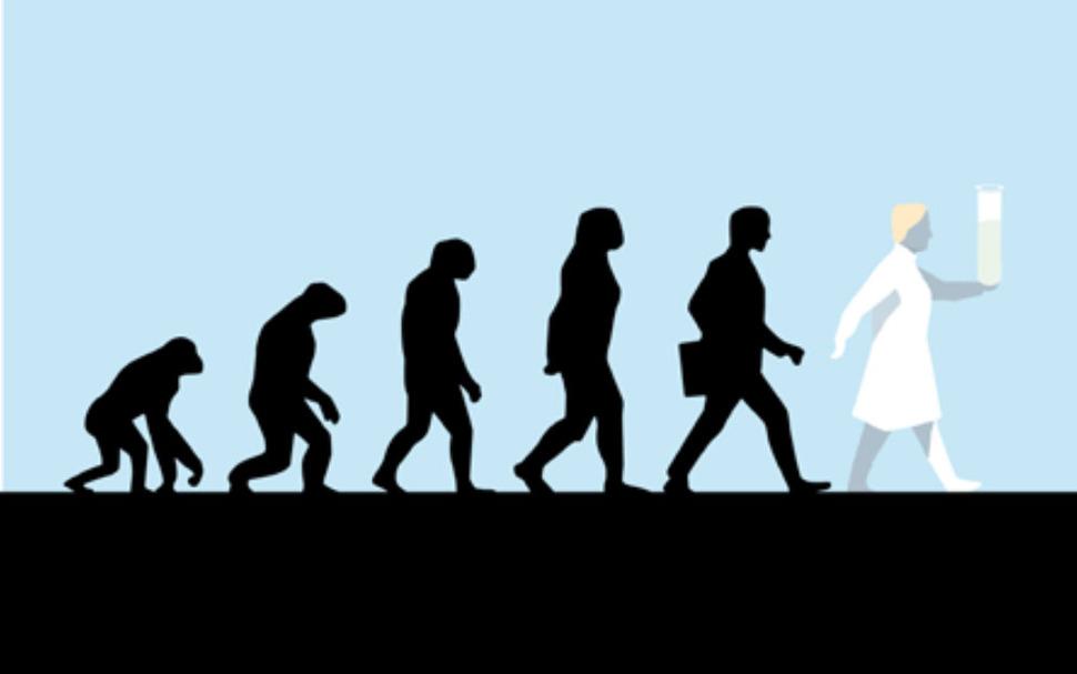 진화에 대한 이미지 검색결과