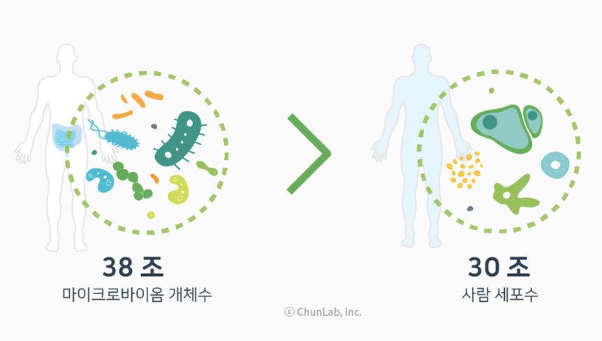 우리 몸 안 미생물(마이크로바이옴)은 사람 세포의 평균 크기보다 훨씬 작지만 수는 더 많은 것으로 추산된다.  천랩 제공