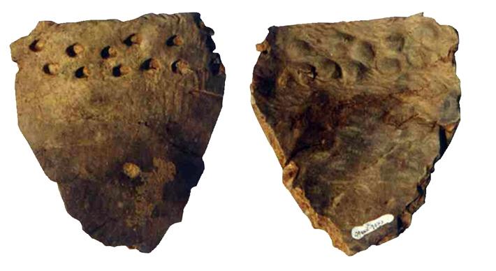 중국 셴런퉁 유적에서 발견된 2만년 전 토기. 강인욱 제공