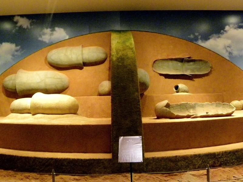영산강 유역에서 나온 대형 옹관을 발굴 당시의 모습대로 전시하고 있다. 전남 나주박물관. 권오영 교수