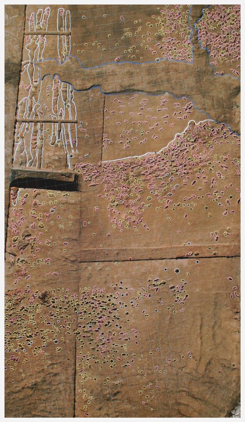 경기 화성 송산동 유적의 논에 찍힌 발바닥 자국. 분홍색은 사람, 노란색은 말과 소. 권오영 교수 제공