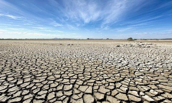 지구 탄소흡수력 '급변침' 예상보다 빨리 올 수 있다