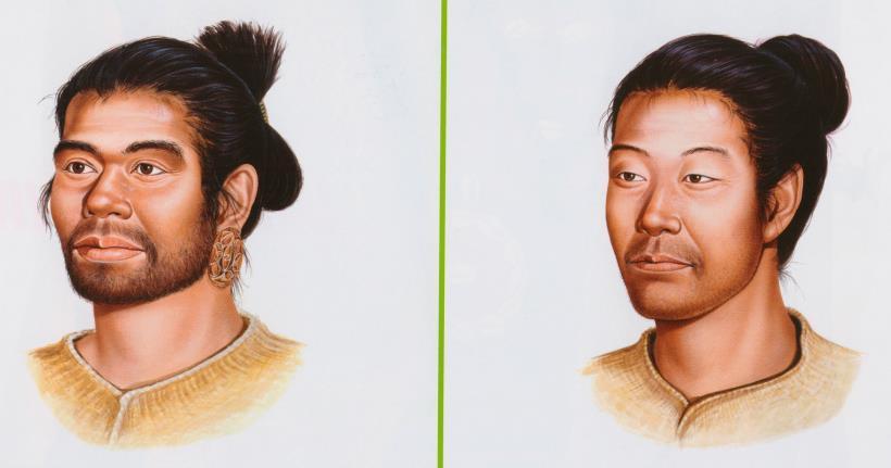 일본 선주민인 조몬인(왼쪽)과 한반도에서 건너간 이주민인 야요이인(오른쪽)의 얼굴. 일본국립역사민속박물관
