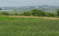 토지자산 2년새 1076조원, 15% 증가