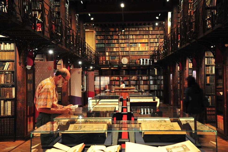 벨기에 안트베르펜(앤트워프) 시립도서관에서 책을 읽는 여행자의 모습. ⓒ이승원 작가