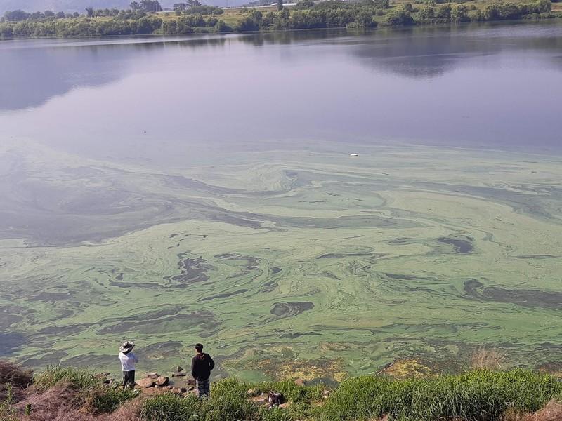 지난 6일 경남 창녕군 부곡면 임해진 인근의 낙동강 모습. 경남환경운동연합 제공