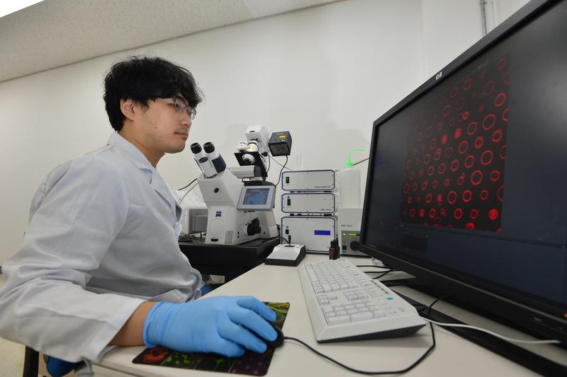 한국과학기술연구원(키스트) 바이오마이크로시스템연구단의 김태송 책임연구원 연구팀의 류현일 박사가 실리콘 기판 위에 고정된 3차원 인공세포 어레이를 공초점 현미경으로 관찰하고 있다. 키스트 제공
