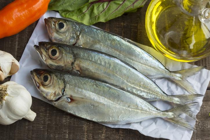 지구온난화로 어획량이 줄어들면 세계 인구의 96% 인간의 뇌에 필수영양소인 디에이치에이(DHA) 공급을 받지 못할 수 있다는 연구 결과가 나왔다. 게티이미지뱅크 제공